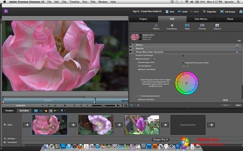 צילום מסך Adobe Premiere Elements Windows 7