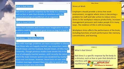 צילום מסך Simple Sticky Notes Windows 7